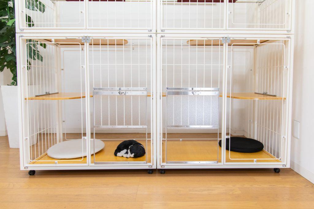 大型猫用キャトドア