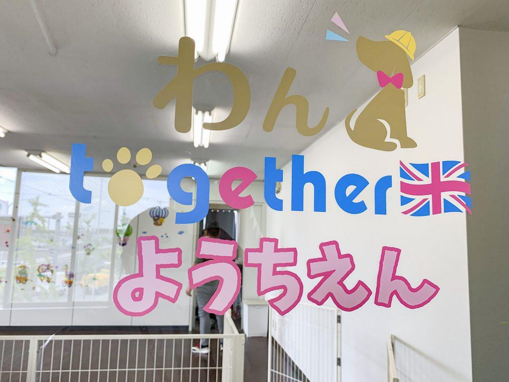 犬の幼稚園わんtogether